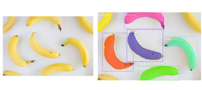 bananas_mrcnn.jpg